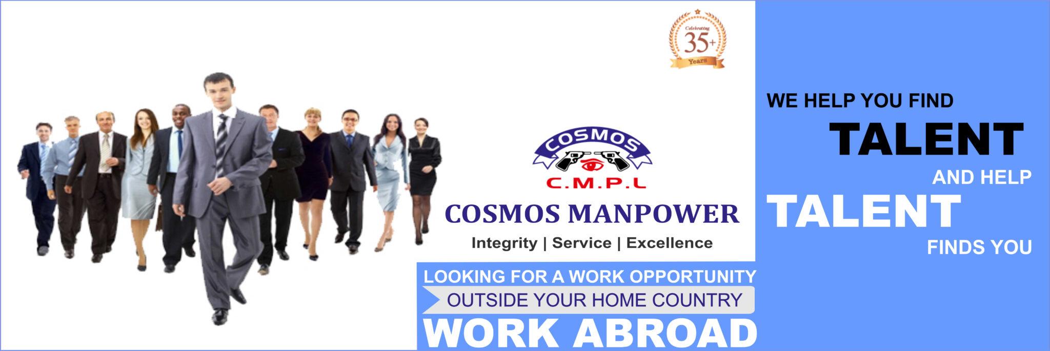 Cosmos Manpower Banner 3